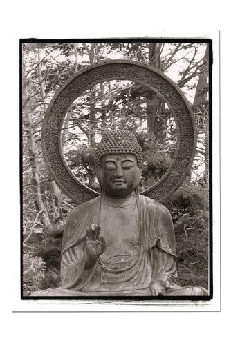 Budha2